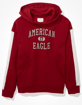 AE Fleece Graphic Hoodie