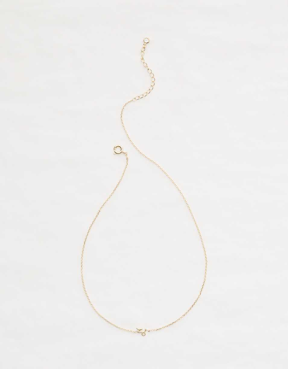 Aerie Capricorn Necklace
