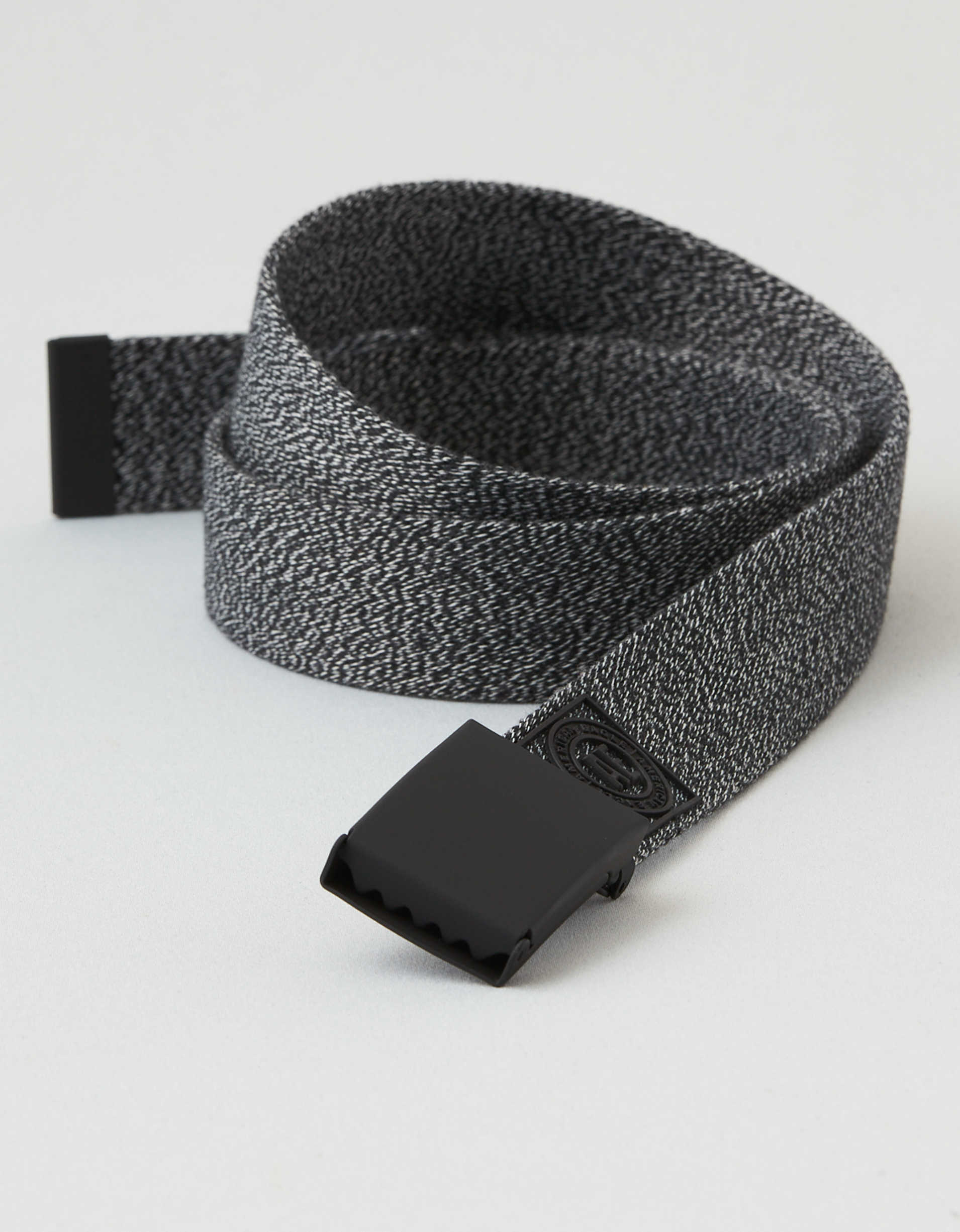 AEO Graphic Web Belt