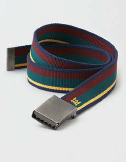 AEO Striped Web Belt