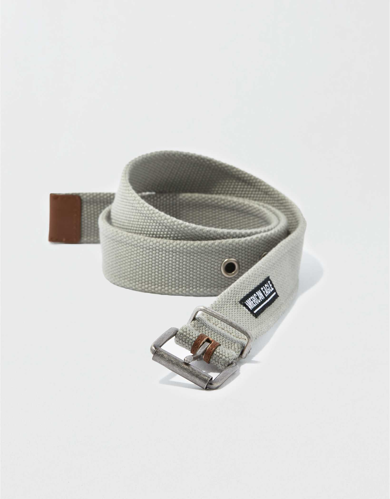 AEO New Grommet Web Belt