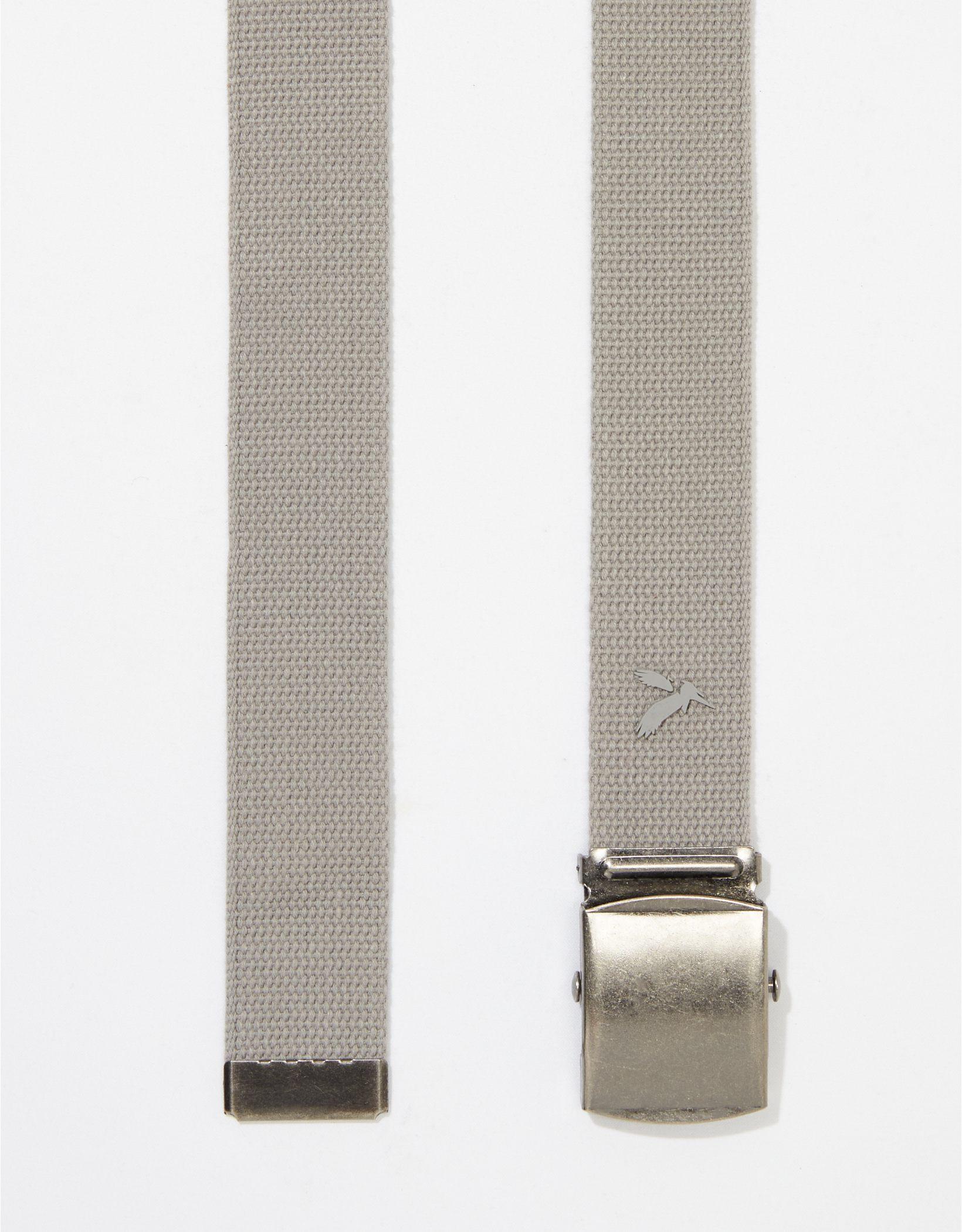 AEO Web Belt