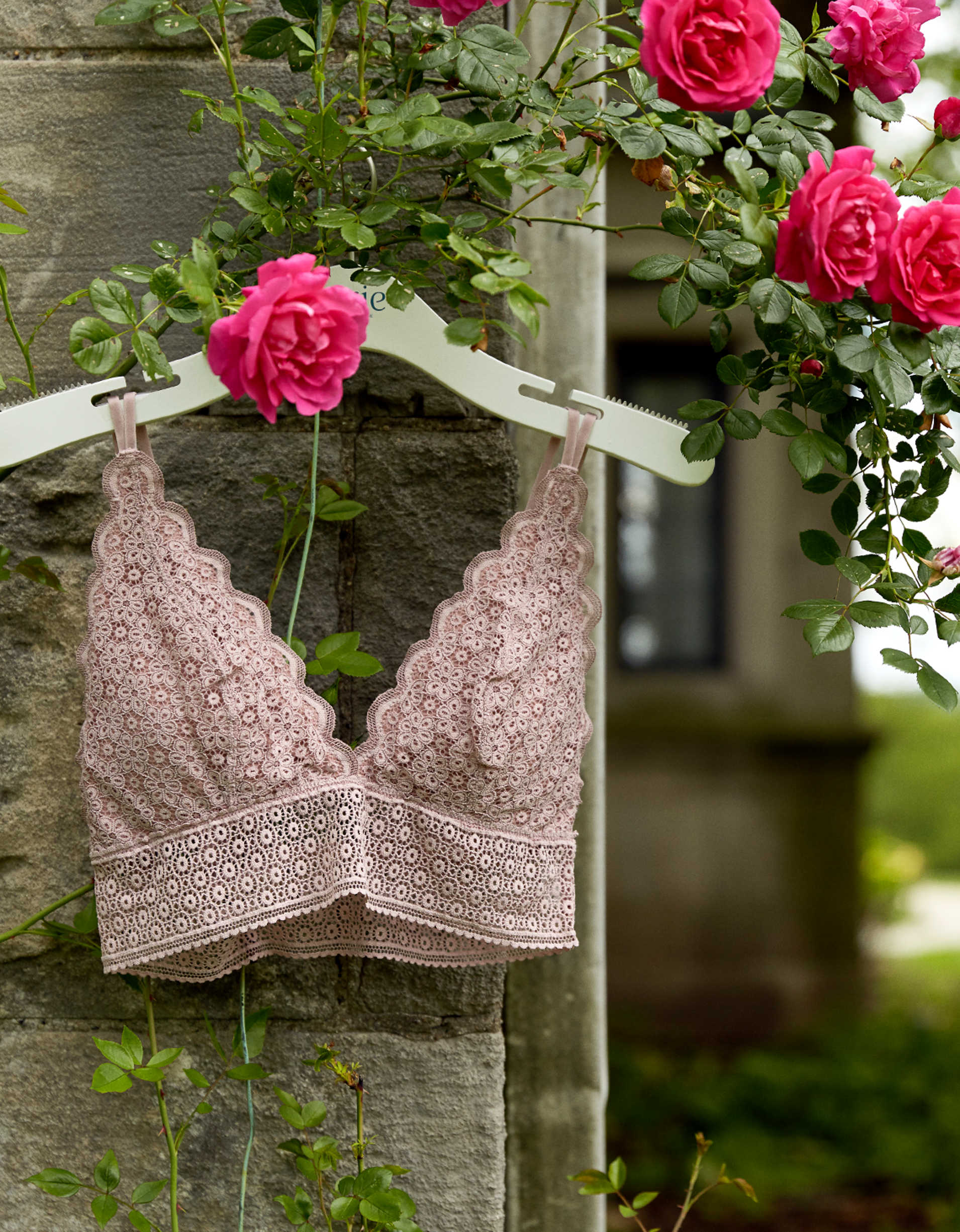 Aerie Queens Lace Padded Plunge Bralette