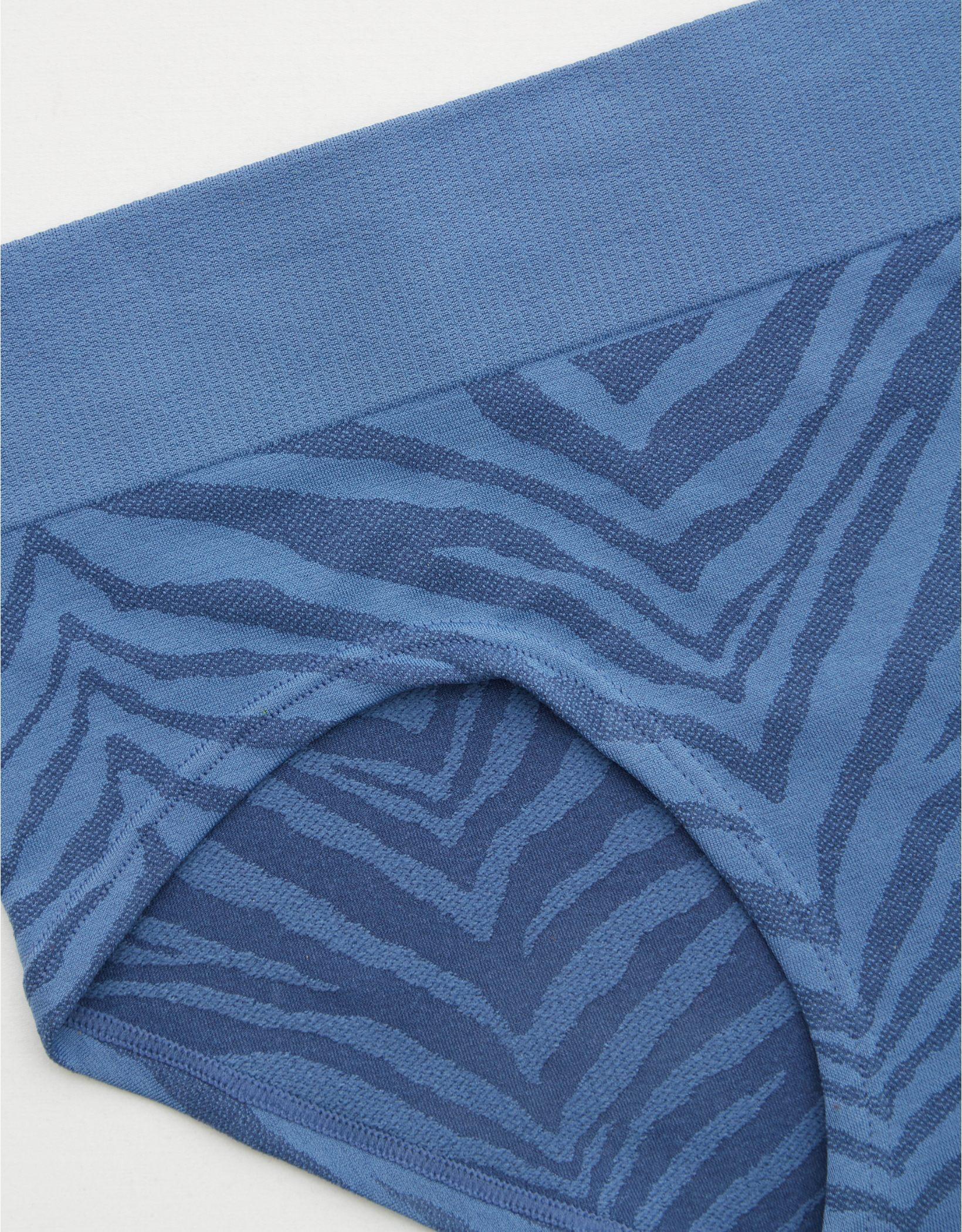Aerie Seamless Zebra Print Boybrief Underwear