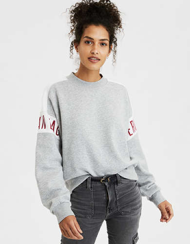 AE Fleece Colorblock Crew Neck Sweatshirt