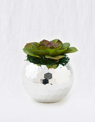 Packed Party Party Planter -