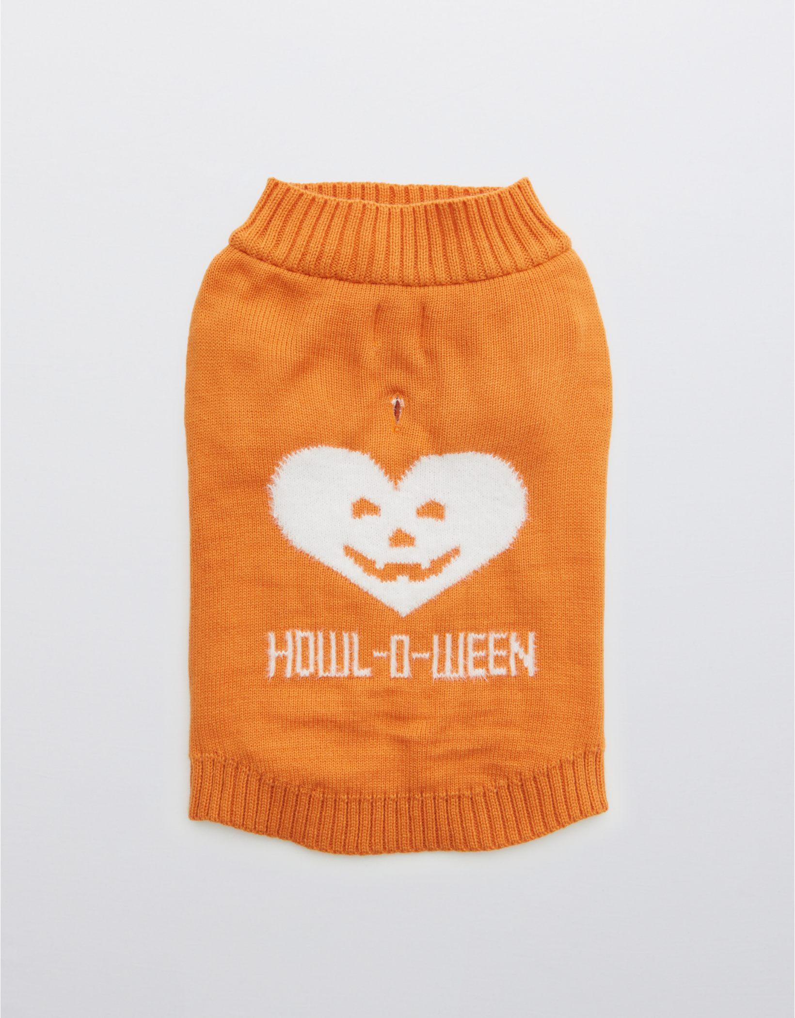 OFFLEASH By Aerie Halloween Dog Sweater