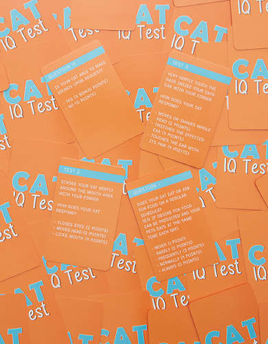 Cat IQ Test Cards