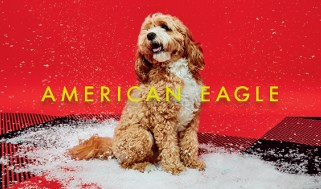 AE Holiday Dog Gift Card (French)
