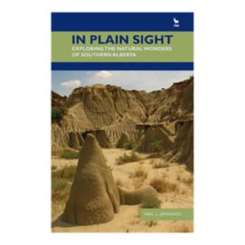 In Plain Sight Guidebook