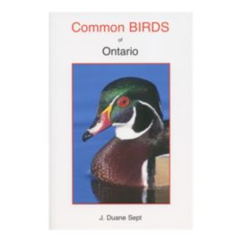 Common Birds Of Ontario Guidebook