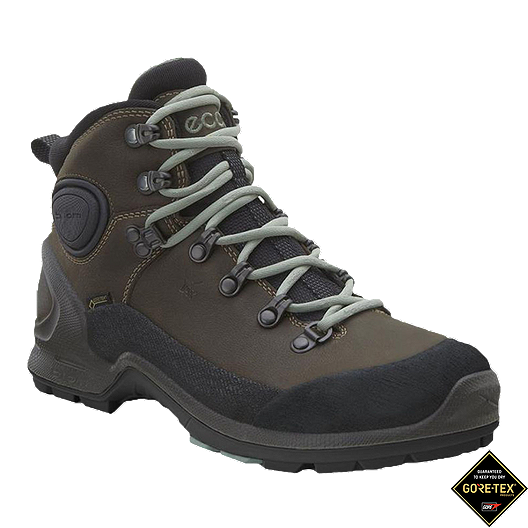51bd075ae3 Ecco Women s Biom Terrain Akka 2 Mid GTX Day Hiking Boots ...
