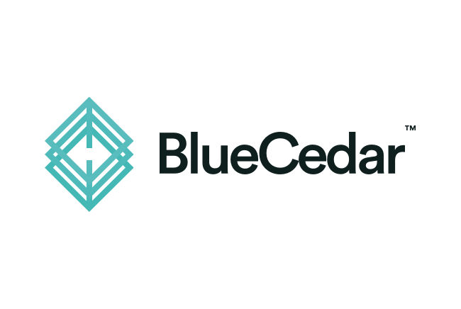 Blue Cedar Networks Inc.