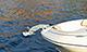 Windlass - Electric w/ Anchor & Rope