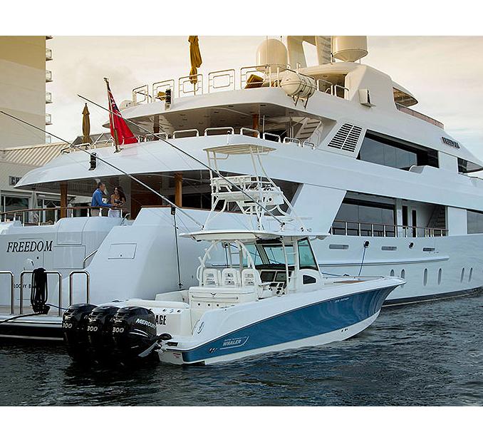 Boston-Whaler-Boat-Type-Tender