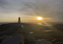 IMG_0084t