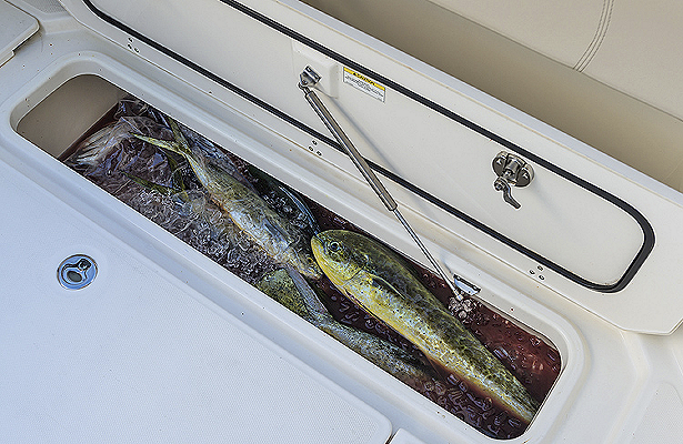 fishing-boats-gallery-fishbox