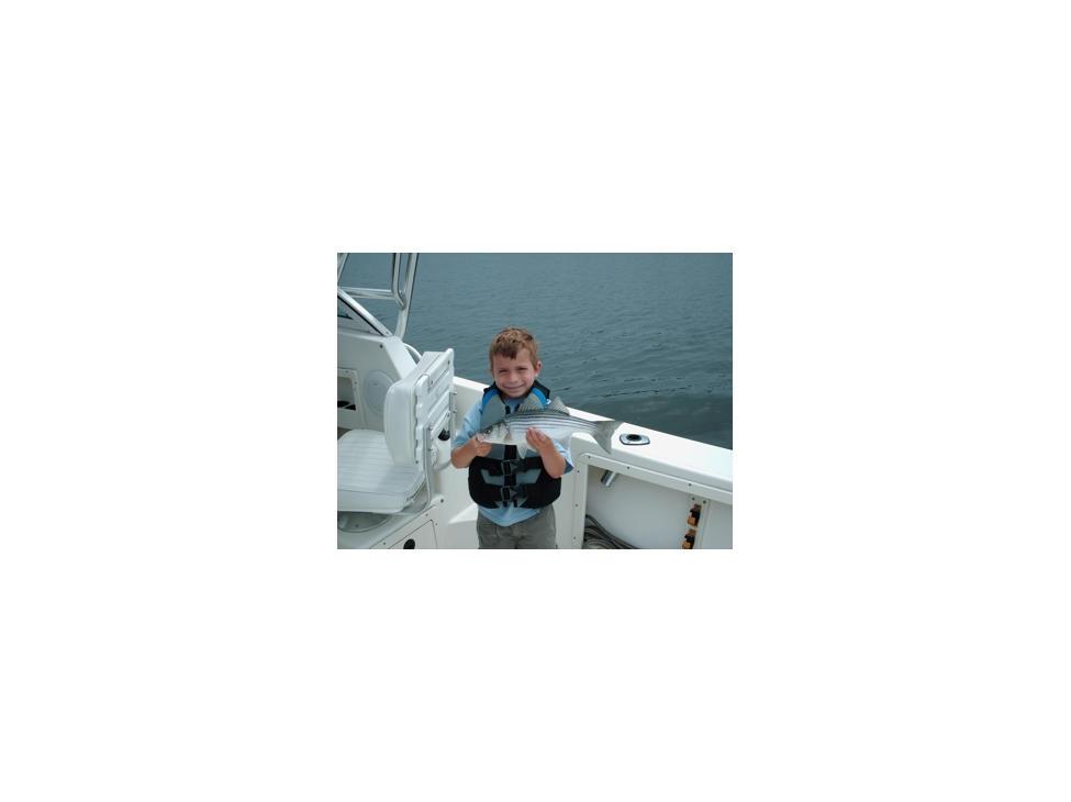 quincy-boston-harbor-striped-bass-mako-2560