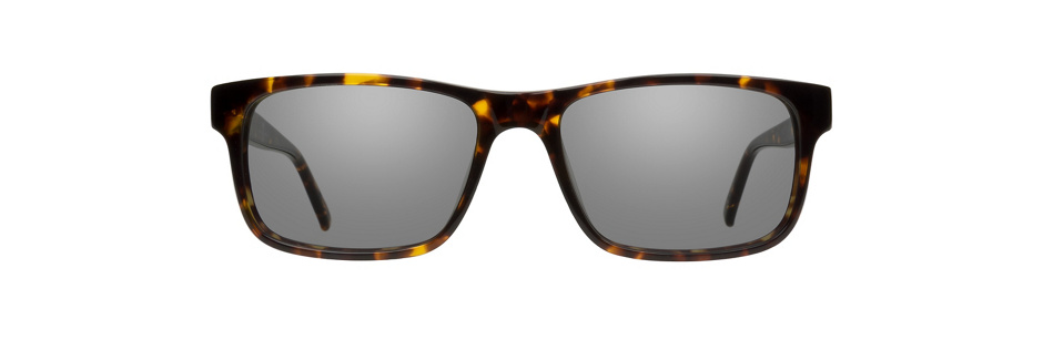 product image of 7 For All Mankind 764-53 Dark Tortoise