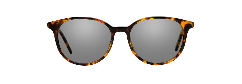 product image of Ann Taylor ATP810-49 Tortoise