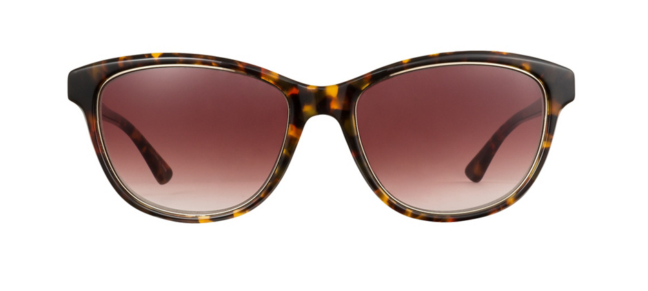 product image of Ann Taylor Sunset-53 Vicuna