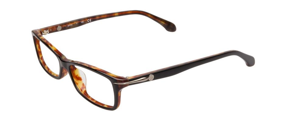 product image of Calvin Klein CK5786 Black Havana