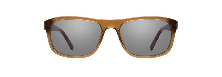 product image of Calvin Klein CK7886 Brown