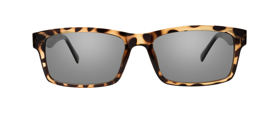 product image of Clearly Basics Zoar Tortoise