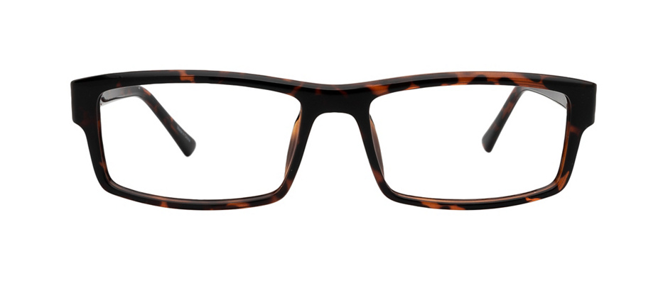 product image of Clearly Basics Dryden-53 Tortoise