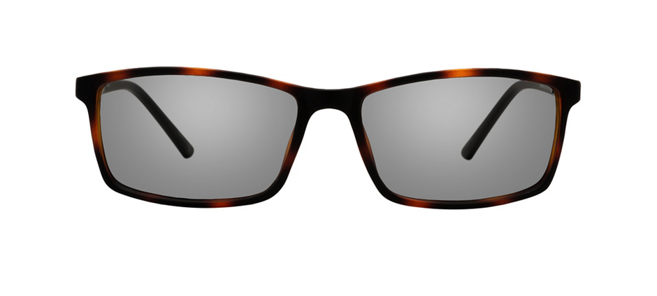 product image of Clearly Basics Gravelbourg-55 Tortoise