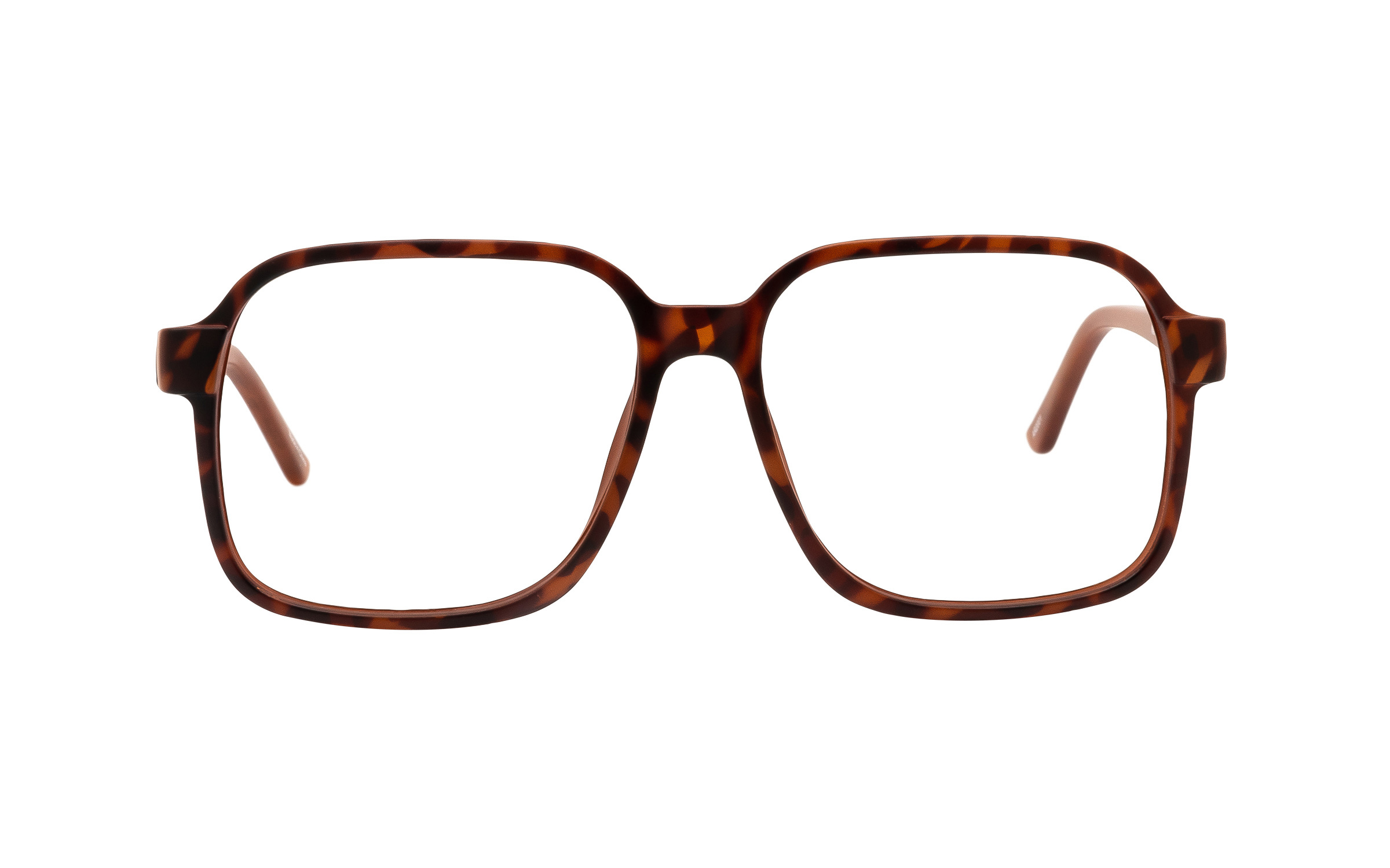 http://www.coastal.com/ - Clearly Basics Mahone Bay CLS052 C02 (54) Eyeglasses and Frame in Havana Tortoise – Online Coastal