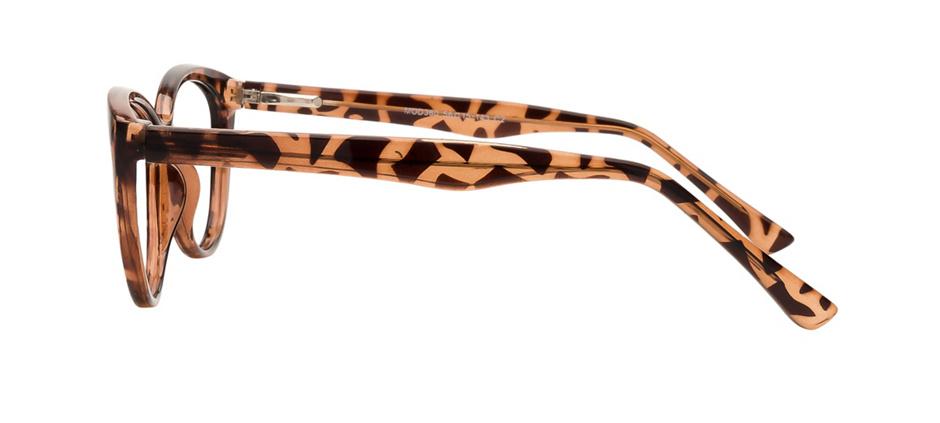 product image of Clearly Basics Lunenburg Tortoise