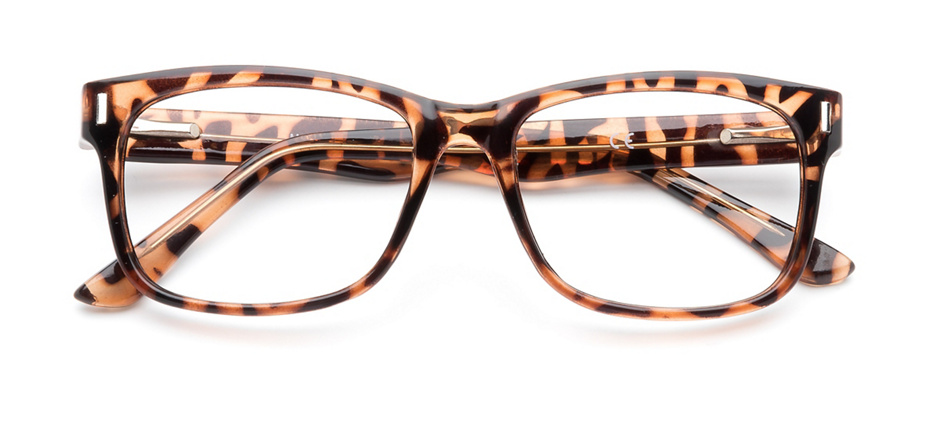 product image of Clearly Basics Medicine Hat Tortoise