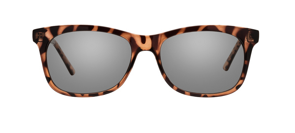 product image of Clearly Basics Hamilton Tortoise