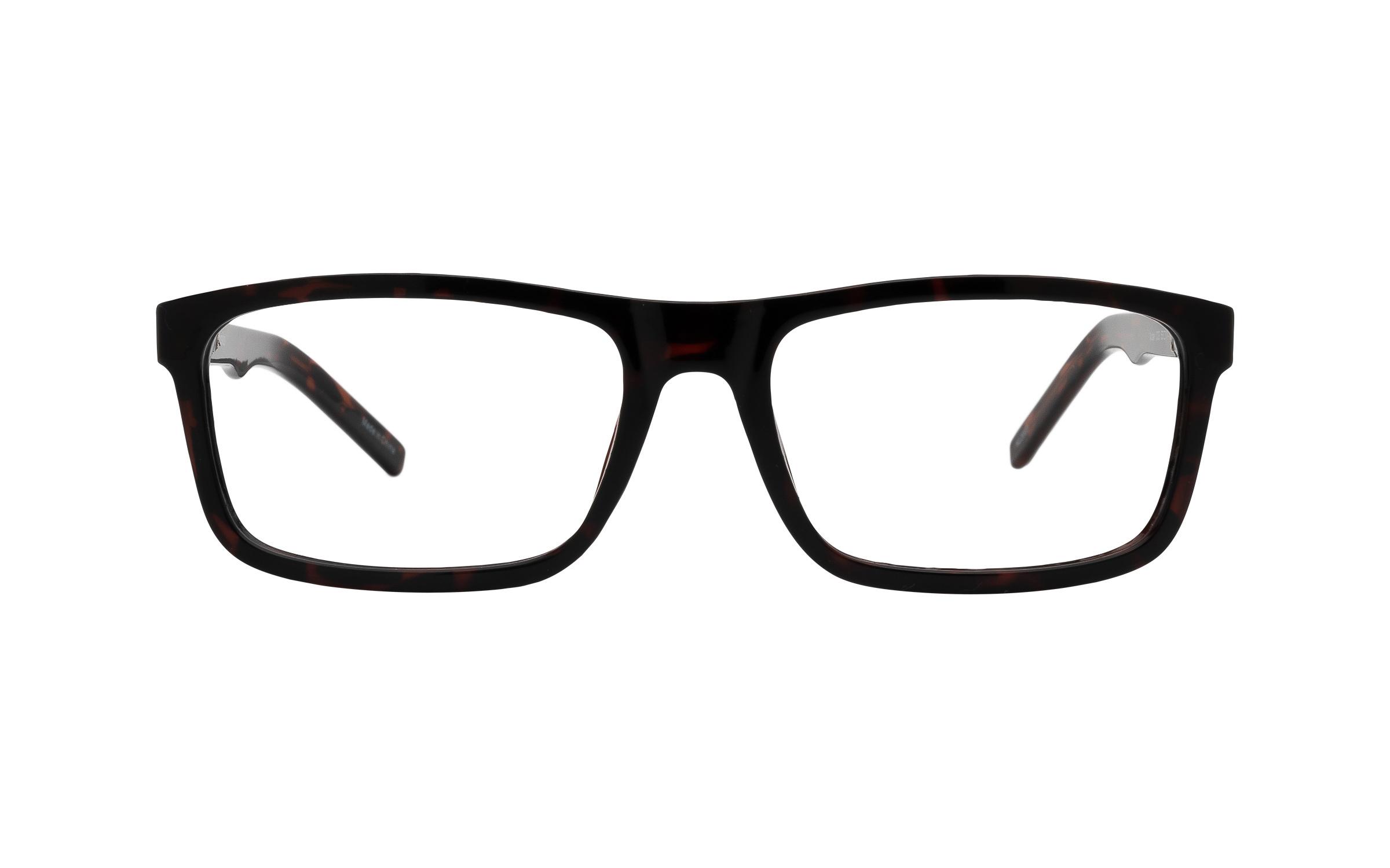 Clearly Basics Nutak COL144 C03 (53) Eyeglasses and Frame in Dark Tortoise Tortoise/Brown