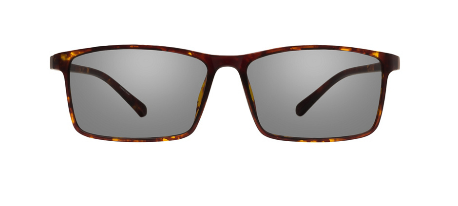 product image of Clearly Basics Southend Demi Tortoise