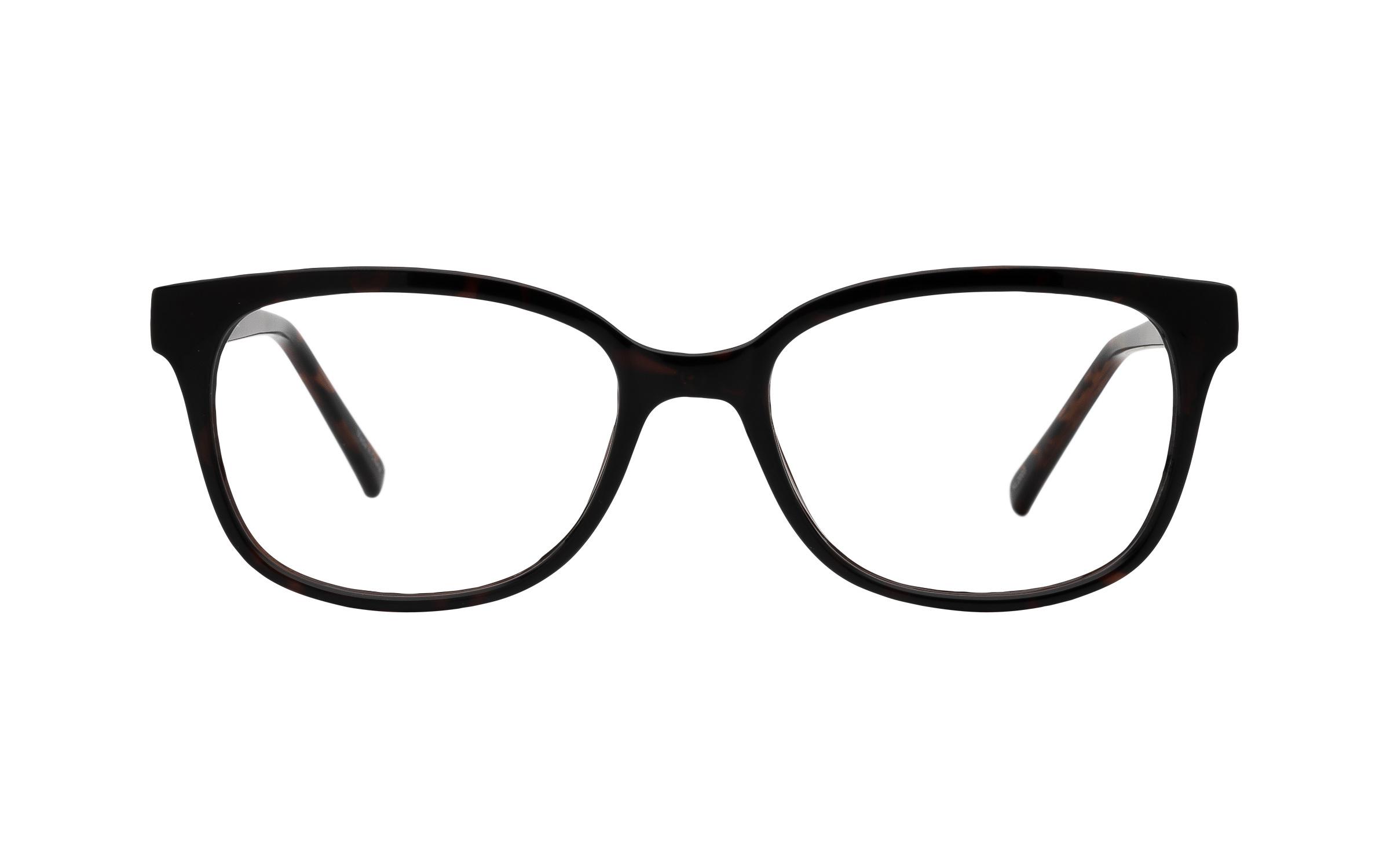 Clearly Basics Roggan River COL146 C02 (52) Eyeglasses and Frame in Dark Tortoise/Brown - Online Coastal
