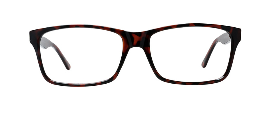 product image of Clearly Basics Watson Lake Écailles brunes