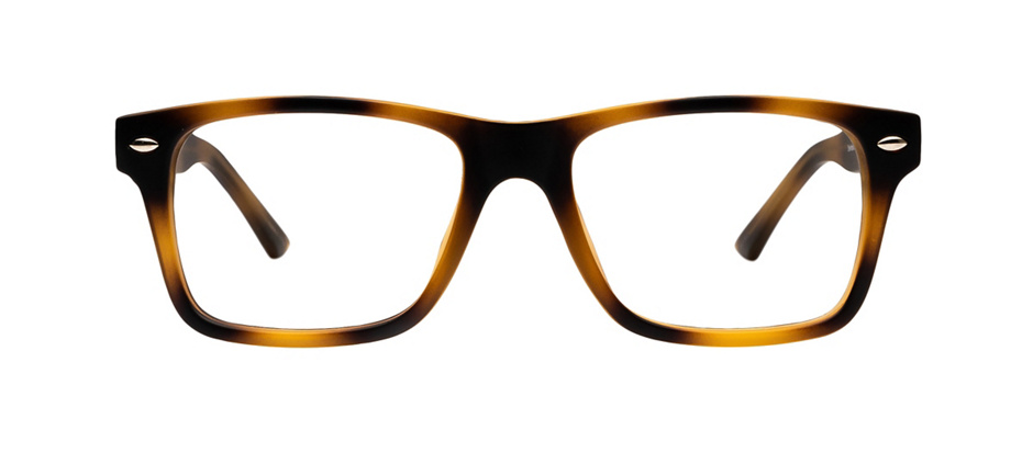 product image of Clearly Basics Steinbach-53 Matte Tortoise