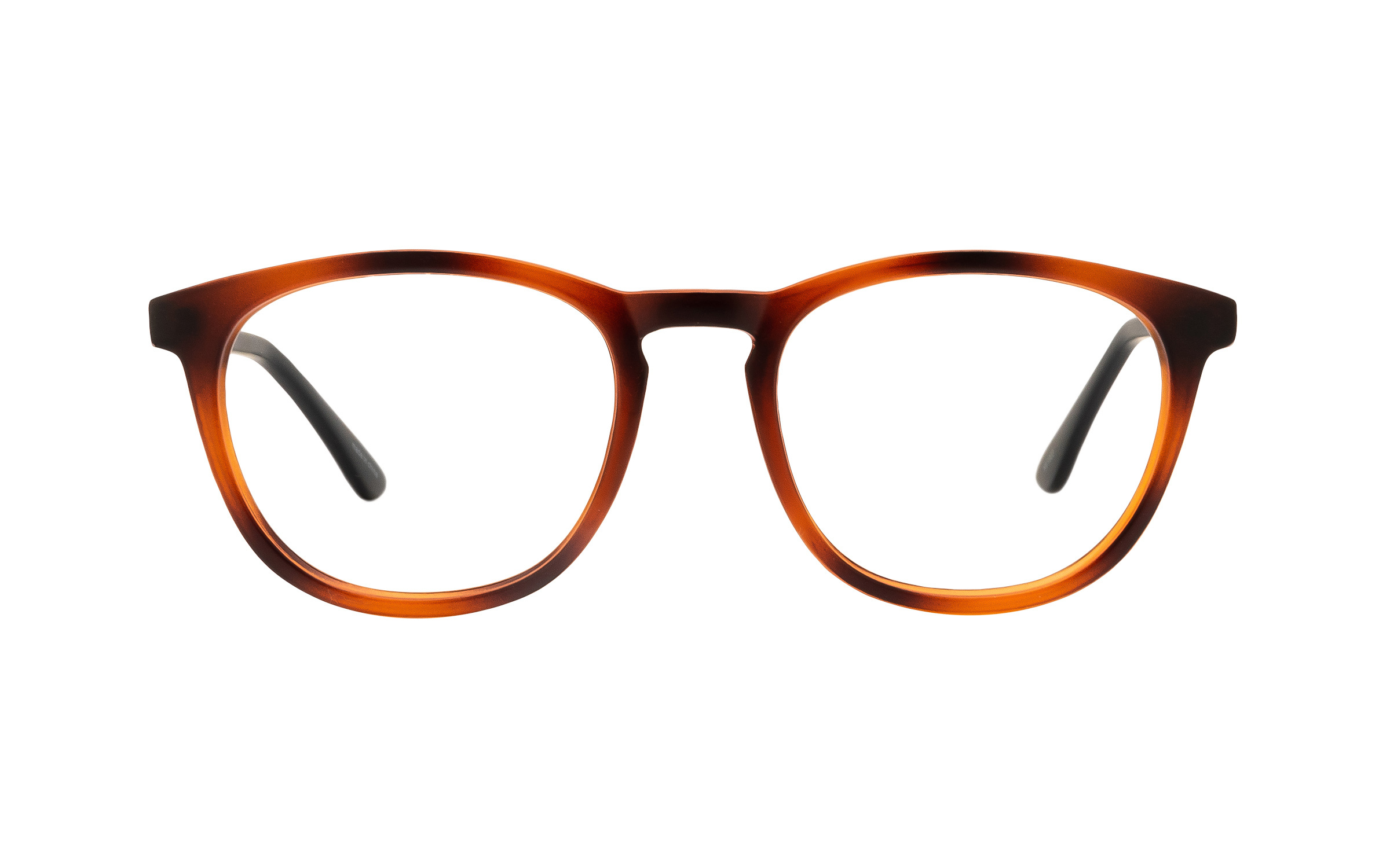 Clearly Basics Tracadie CLS036 C01 (52) Eyeglasses and Frame in Matte Tortoise/Brown - Online Coastal