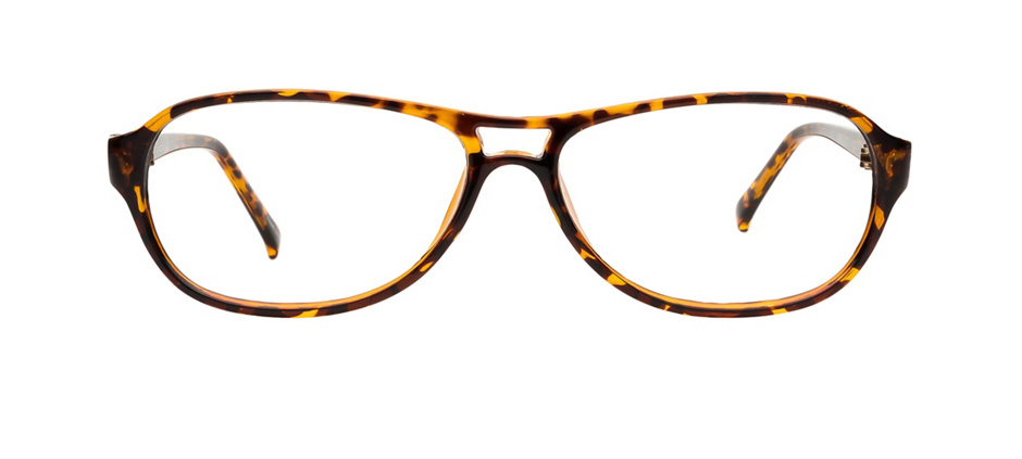 product image of Clearly Basics Renwer Tortoise