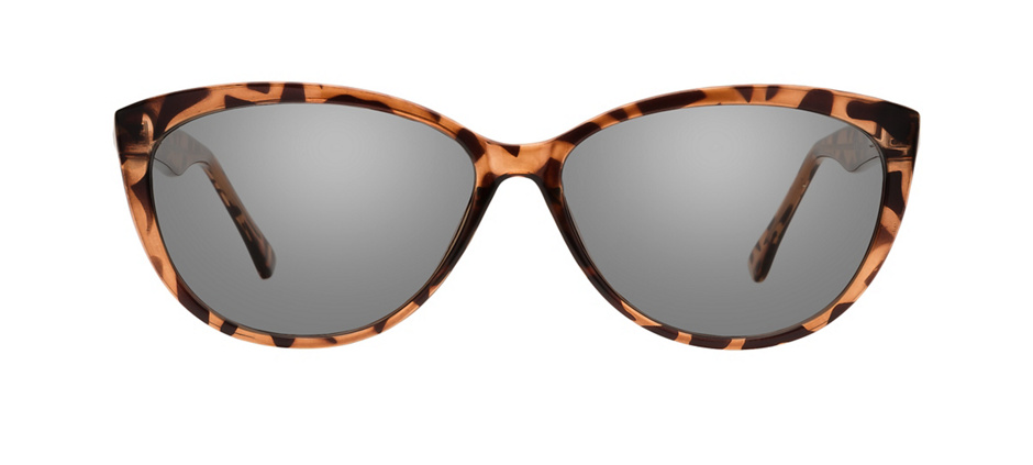 product image of Clearly Standard Lunenburg Tortoise