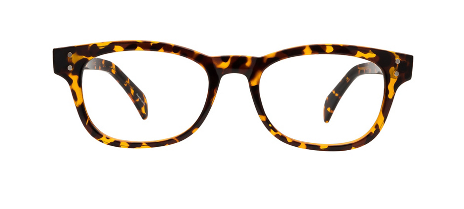 product image of Clearly Standard Kingsvale Tortoise