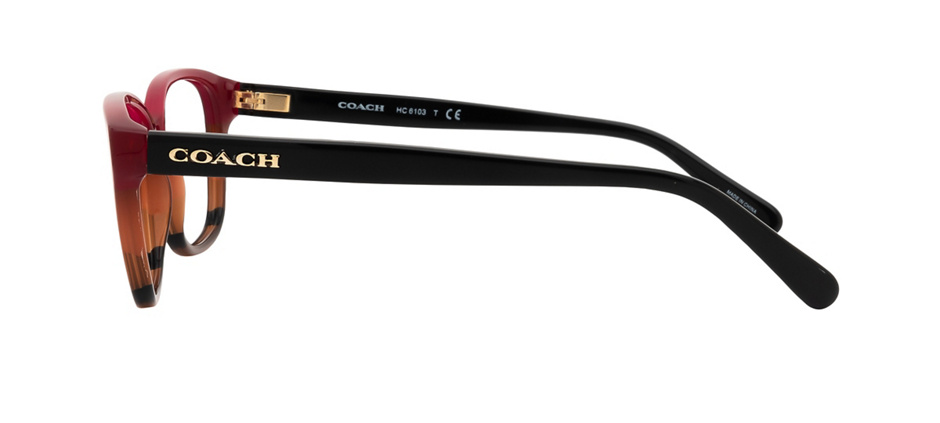product image of Coach HC6103-54 Aubgn Cognac Varsity Stripe