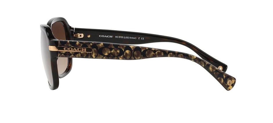 product image of Coach HC8105-58 Dark Tortoise