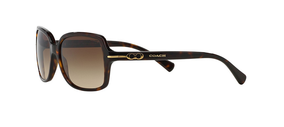 product image of Coach HC8116-56 Dark Tortoise