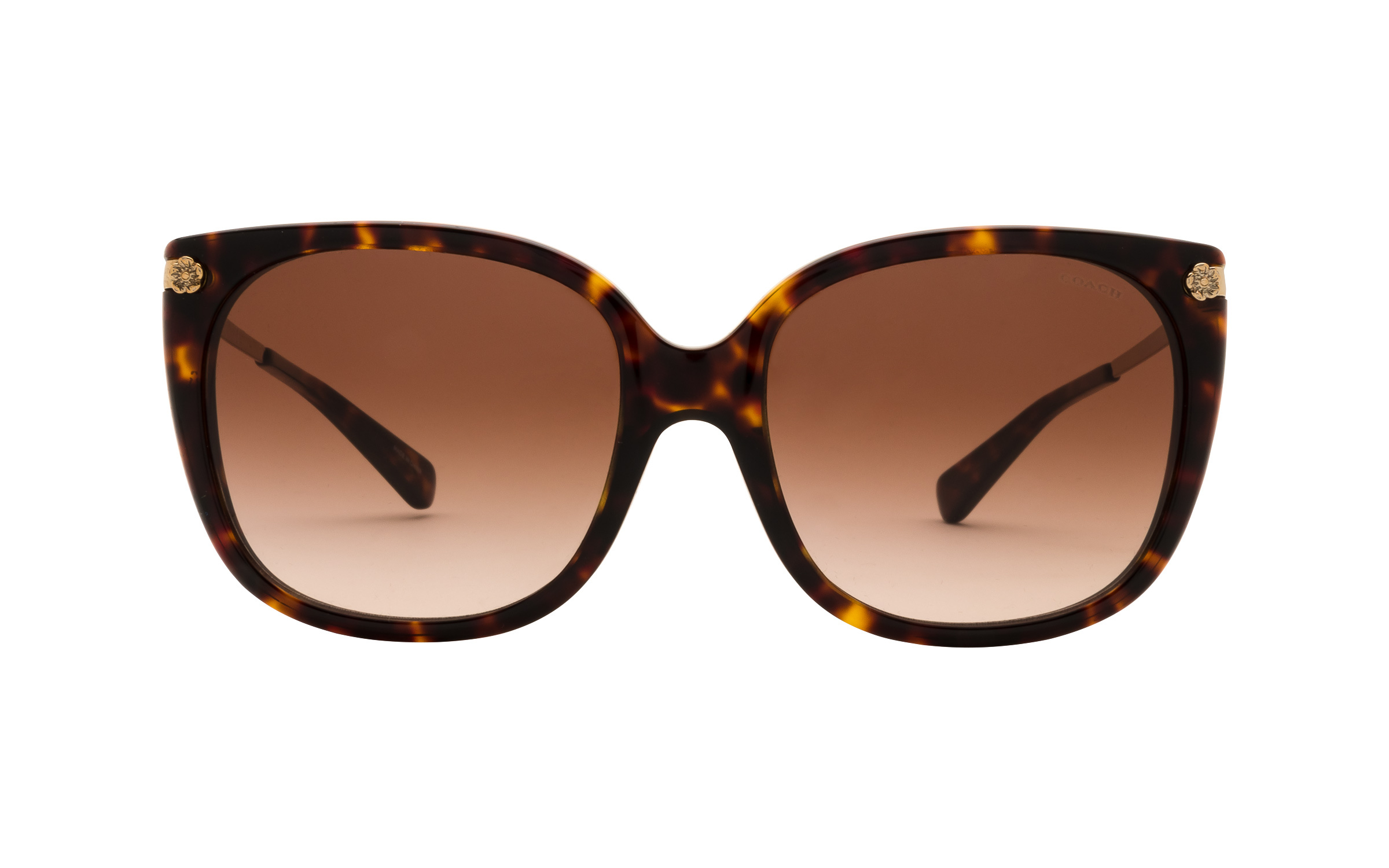 http://www.coastal.com/ - Luxottica Coach HC8272 512013 56 Sunglasses in Tortoise – Online Coastal