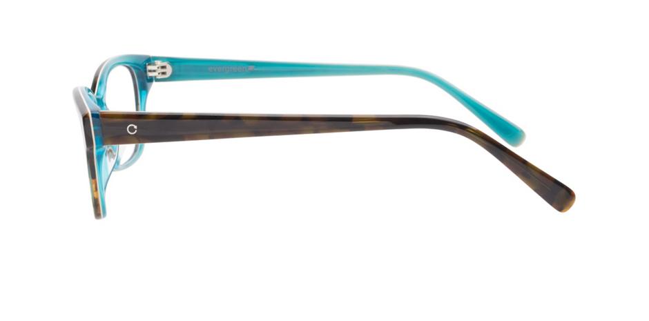 product image of Evergreen 6013 Dark Tortoise Aqua