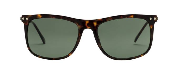 product image of Foster Grant FGM Demi Tortoise