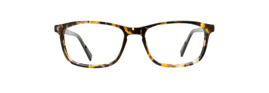 product image of JK London Earls-Court-54 Tortoiseshell Black